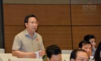 Во Вьетнаме идёт подготовка к депутатским запросам