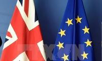27 стран ЕС впервые обсудили будущие отношения с Великобританией после Brexit