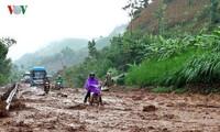 """越南各地集中克服台风""""电母""""造成的损失"""