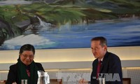 越南国会副主席丛氏放对丹麦进行访问