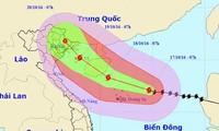 """越南各地主动应对台风""""莎莉嘉"""""""