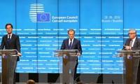 欧盟峰会:内部合作与外交决策