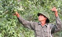 北(氵)件省与各地配合为农产品寻找销路