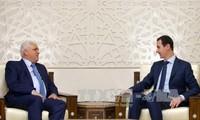 叙利亚和谈:叙政府重视谈判