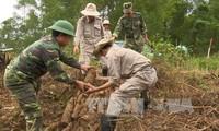增进越南和美国人民的友谊