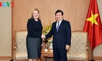 越南政府副总理郑庭勇会见俄罗斯和爱尔兰驻越大使