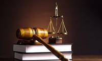 依法执行越南法律及国际法