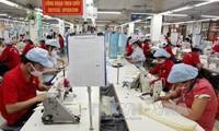 越南与欧亚经济联盟自贸协定联合委员会第一次会议在俄举行