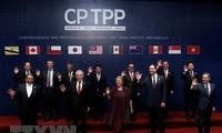 CPTPP为越南继续在新水平融入国际创造条件