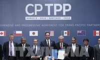 越南在日本CPTPP战略中占据重要地位
