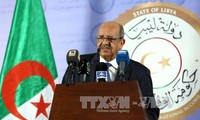 阿尔及利亚将承办非洲反恐会议