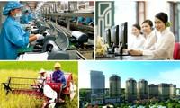 法国媒体高度评价越南经济发展成就