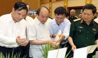 阮春福出席农业现代化提案实施小结会议