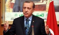 埃尔多安:土耳其将不会向美国投降