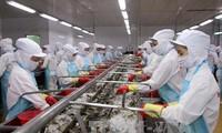 美日中韩为越南水产的四大出口市场