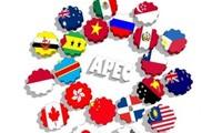 越南进一步提高在亚太经合组织的作用和地位