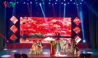 岘港市外国艺术节颁奖仪式举行