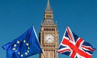 英国没有计划举行第二次脱欧公投