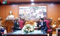 加强越南与荷兰媒体合作