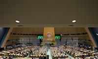 联合国呼吁国际社会努力遏制结核病
