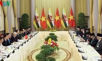 越共中央总书记、国家主席阮富仲与文莱达鲁萨兰国苏丹哈桑纳尔举行会谈