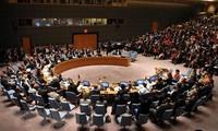 参加联合国安理会 提高越南的地位