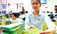 越南国家银行继续执行货币调控政策   控制通胀   稳定宏观经济