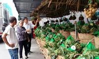 Tuần lễ nhãn lồng Hưng Yên tại Hà Nội