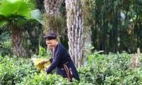 Lai Châu cần nỗ lực để giảm nghèo bền vững