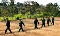 Các hoạt động kỷ niệm 70 năm thành lập Quân đội nhân dân Việt Nam ở trong và ngoài nước