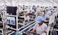 Giao thương Việt Nam - Brazil lần đầu vượt ngưỡng 3 tỷ USD