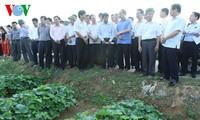 Chủ tịch Ủy ban TƯ MTTQ Việt Nam Nguyễn Thiện Nhân khảo sát mô hình Hợp tác xã tại Thanh Hóa