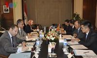 Việt Nam và Ai Cập họp tham vấn chính trị