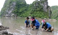 Dự án Jica đóng góp thiết thực bảo vệ môi trường vịnh Hạ Long
