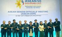 Cuộc họp các Quan chức Cao cấp ASEAN (SOM)