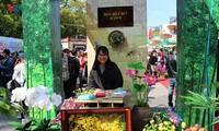 Lễ hội Việt Nam tại Aichi 2018 - Thành phố Hồ Chí Minh hội nhập và phát triển