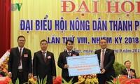 Đà Nẵng: Hơn 10 tỷ đồng hỗ trợ nông dân xây dựng mô hình  sản xuất rau củ quả sạch ứng dụng công nghệ cao