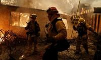 Chưa có người Việt Nam thiệt mạng trong thảm họa cháy rừng ở Mỹ