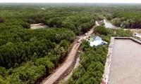 Các dự án thích ứng biến đổi khí hậu ở An Giang cần mang tính liên vùng