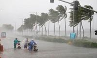 Bão Wipha đổ bộ Quảng Ninh, gây mưa lớn tại một số địa phương