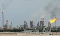 Многие страны прилагают совместные усилия для решения кризиса в регионе Персидского залива