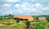 Весна в Котаме