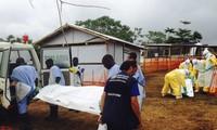 มีผู้เสียชีวิตจากการติดเชื้อไวรัสอีโบลากว่า๑หมื่น๑พันคน
