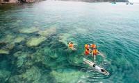 เวียดนามต้อนรับนักท่องเที่ยวต่างชาติกว่า๔ล้านคนใน๕เดือนแรกของปี๒๐๑๖