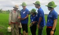 HCM市の若手知識人、 山間部でのボランティア活動に参加
