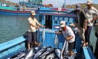 รัฐบาลอนุมัตินโยบายพัฒนาอาชีพประมงในเขตทะเลสากล