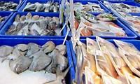 มูลลค่าการส่งออกสัตว์น้ำของเวียดนามในเดือนสิงหาคมเพิ่มสูงขึ้น