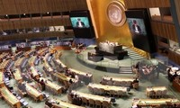 Vietnam pledges to fight proliferation of weapons of mass destruction