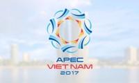Vietnam promotes comprehensive international integration