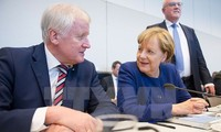 German coalition talks see positive signs